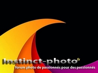 instinct-photo-forum-photo